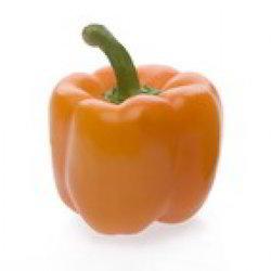 Orange Color Capsicum Seeds