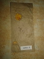 Natural Lokta Handmade Paper With Flower Petals