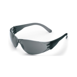 Frontier Goggles