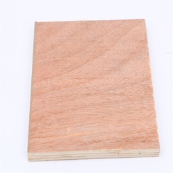 Rock Solid Shuttering Plywood