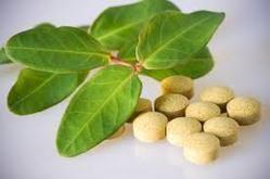 Green Tea Tablet