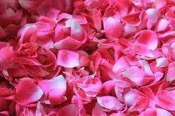 Pink Rose potpourri