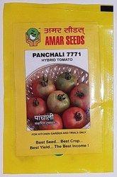 Tomato Seed - Panchali ( Hybrid)