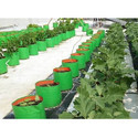 Organic Grow Bags