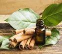 Cinnamon Leaf Oil