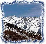 Shimla Domestic Tour