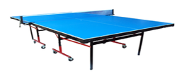 Table Tennis Table Professional