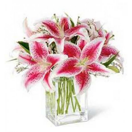 Lily Flower Red Lily In Square Vase Fp6 Retailer From Jaipur