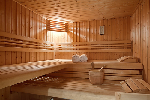 Sauna Bath Wooden Room Sauna Designer Room Manufacturer