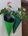 Hanging Grow Bags with Anthurium