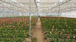 Agricultural Irrigation Service