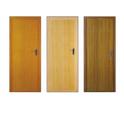 PVC Plastic Doors
