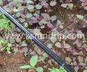 Garden Drip Irrigation Tube