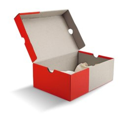 Shoes Packaging Boxes