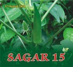 SAGAR 15 F-1 Hybrid Okra