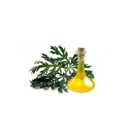 Worm Seed Oil