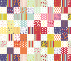 Printed Cotton Quilt Fabric