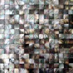Mosaic Sea Shell Mop Tiles