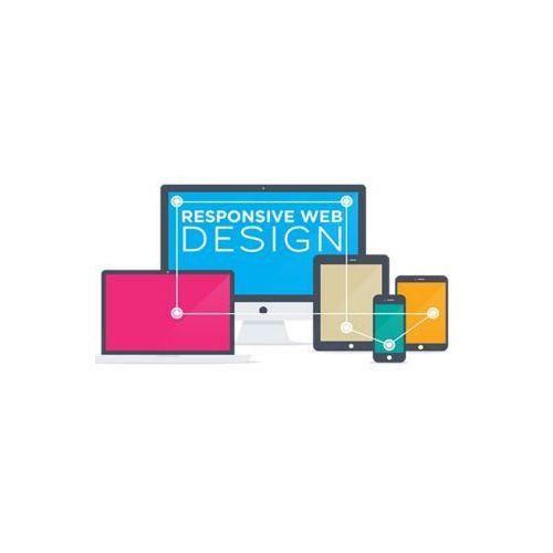 Website Designing Services - Responsive Web Designing Service