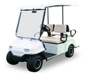 Electric Buggy