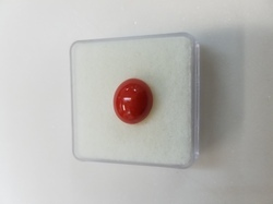 Japanese Coral Moonga Gemstone