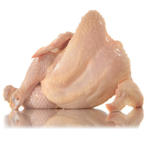 whole chicken wholesale trader from delhi