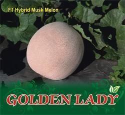 Golden Lady F-1 Hybrid Muskmelon Seed