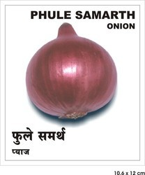 Onion - Phule Samarth Seeds