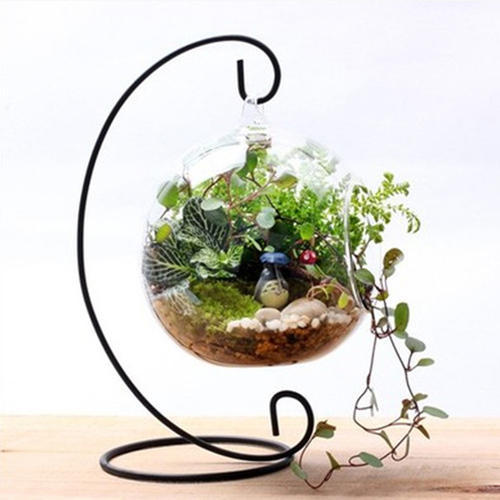 Terrarium Planters Glass Hanging Planter Wholesale Trader From