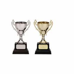 Metal Trophy For School