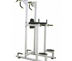 ES - 027 Vertical Knee Raise Machine