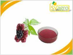 Black Berry Extract