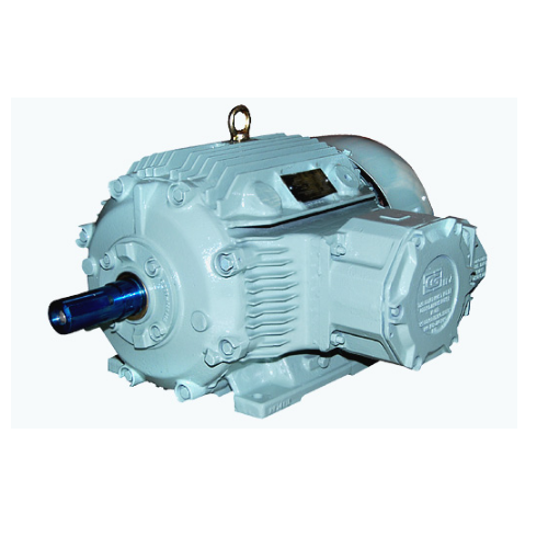 Flame Blower Motor Power 05000 : Flame proof motors ac manufacturer