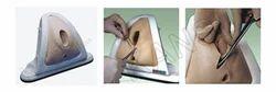 Episitomy Training Simulator For Obstetric Model