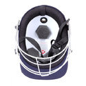 SS Prince Cricket Helmet