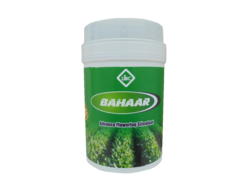 Bahar (Flowering Stimulant)