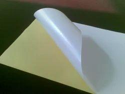 Solvent Less Platinum Coated Paper