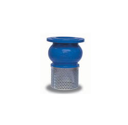 Foot Valve For Water Pumps