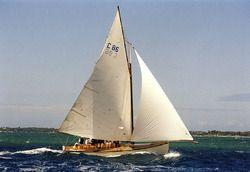 Wagtail Sailing Boats