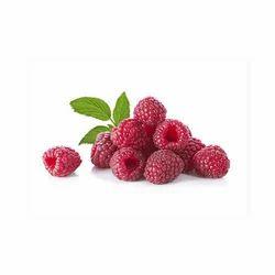 Red Raspberry Extract