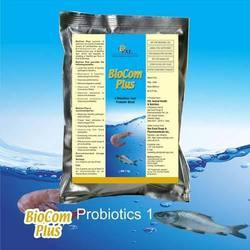 Aquaculture Supplement