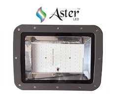 Aster Flood Light