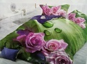 Bravo Bed Sheets RosePetal