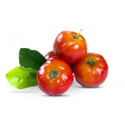 Acerola Extract