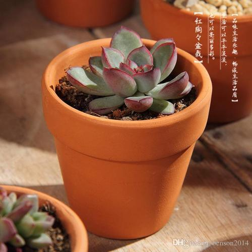 IndiaMART & Clay Pot - Clay Flower Pot Latest Price Manufacturers \u0026 Suppliers