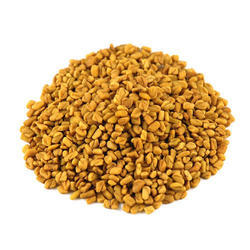 Fenugreek Oleoresin