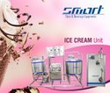 Natural Ice Cream Mini Plant