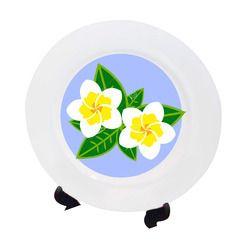Plain Ceramic Plate