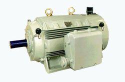 Crompton Greaves Nema Cast Iron Enclosure Motors (LV)