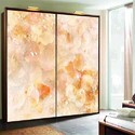 Digital Printed Glass For Wardrobe